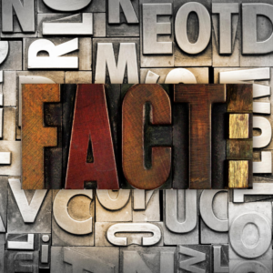 Facts type block