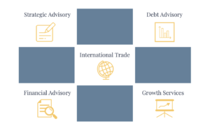 Icons representing Advisory services